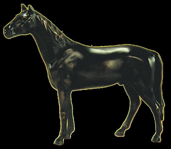 Bronzefarbenes Pferd