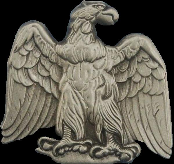 Erhabener Adler